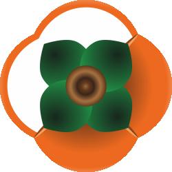 sochi_15_logo_v_internet